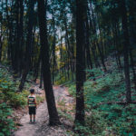 Small boy alone on a path leading into a forest